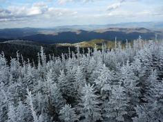From atop Klingman's Dome, Smoky Mtn. National Park