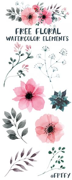 Free Watercolor Floral Elements - Free Pretty Things For You