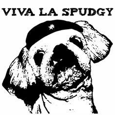 Viva La Spudgy! $18