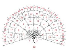 Generation Personalized Ancestral Family Tree  They Also Have