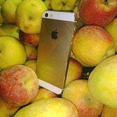 Laquelle choisir? #Apple #IPhone #pommes #geeks #planetegeeks #planète #like4like #hashtag #follow #follow4follow #instagood #instalike #instadaily #photooftheday #photodujour