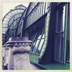 palmenhaus 1010 vienna, photocredit andrea pickl