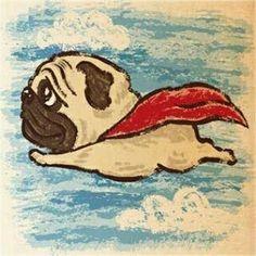 It's a bird , it's a plane ✈, NO, it's Super Pug!