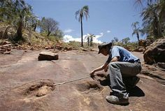 Bolivian Dinosaur Footprints from the Early Cretaceous
