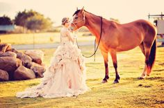 Amazing ball gown and a horse in the paddock
