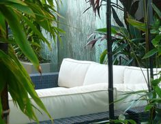 At Scenic Blue Design, we work with you every step of the way to deliver an original, personal, and stunning garden. Small Space Gardening, Blue Design, Small Spaces, Garden Design, This Is Us, Gardens, Couch, The Originals, Stylish
