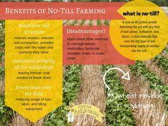 Benefits of No-Till Farming