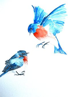 Watercolor+Painting+Original+Art+Blue+Birds+11x15+by+WoodPigeon,+$50.00