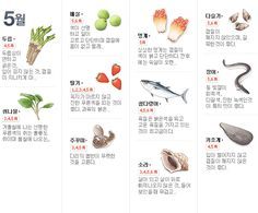 ◉ 월별 제철 음식 [출처]월별/사계절 제철 음식 Cooking Tips, Cooking Recipes, Healthy Recipes, Seasonal Food, Survival Food, Food Categories, Korean Food, Food Design, Food Plating