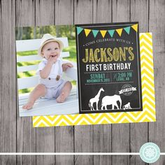 Safari or Zoo Birthday Invitation