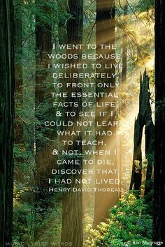 My favorite Transcendental Writer and the movement he presents in this statement awakened me the instant I read it.