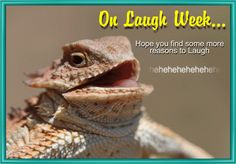 Be different! #Whatsapp this #laughing lizard card instead of an emoji in your groups with this #fun #free #ecard. #Laughweek