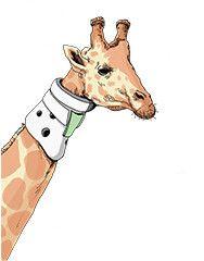 Zürafa designed by Aksel Ceylan