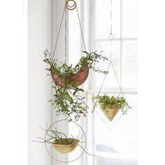 Assembly Home Eos Hanging Planter (55 CAD) ❤ liked on Polyvore featuring home, home decor, small item storage, bronze, window planter, bronze home decor and bronze planter