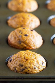 Looking for simple, no-brainer pumpkin chocolate chip muffins? These Easy Pumpkin Muffins with Chocolate Chips are filled with spice and pumpkin flavor, and can probably be made from ingredients in your pantry! Pumpkin Spice Muffins, Pumpkin Chocolate Chip Muffins, Chocolate Chip Recipes, Pumpkin Bread, Pumpkin Puree, Paleo, Fall Baking, Muffin Recipes, Scone Recipes