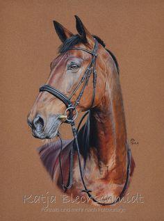 Pferdeportrait - 30 x 40 cm https://www.facebook.com/Portraits.und.mehr.nach.Fotovorlage