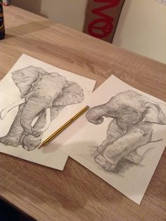 Two drawings of elephants I did for as level art