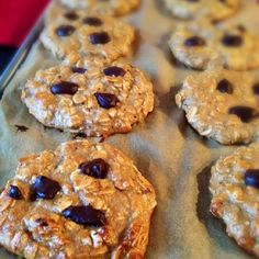 chocolate chip protein cookies--use cranberries instead of chocolate chips