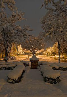 Winter Glow by Noel Kerns, via Flickr