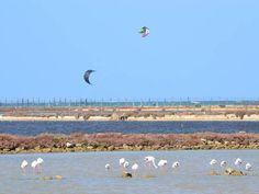 Stagnone Nature Reserve, Sicily