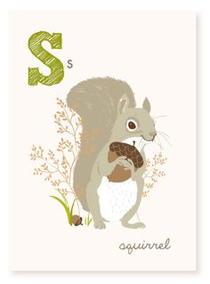 S is for Squirrel  5x7 art print by SeaUrchinStudio on Etsy, $4.50