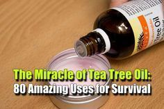 The Miracle of Tea Tree Oil: 80 Amazing Uses for Survival - SHTF Preparedness