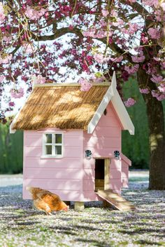 Our little Farrow & Ball pink Chalet hen house. Inspired by the arrival of Princess Charlotte.