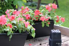 Orthex black window boxes are made of 100% recycled material