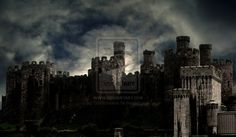 Google Image Result for http://fc05.deviantart.net/fs40/i/2009/289/1/4/Dark_and_spooky_castle_by_Gothicmama.jpg