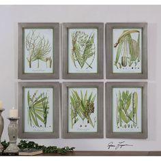 Uttermost Palm Seeds Framed Prints, Set of 6 41515