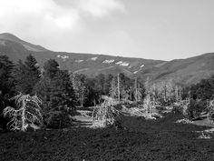 Etna 2013 | Flickr – Condivisione di foto!
