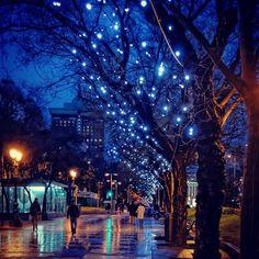 Navidad, Paseo de Recoletos, Madrid