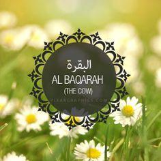 Al Baqarah Surah graphics