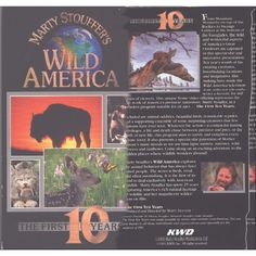 Marty Stouffer's WILD AMERICA, The First 10 Years, VHS Listing in the Other,Comedies,VHS,Movies & DVD Category on eBid United States | 137709152