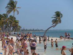 F and C Travel - Rotterdam Western Cruise Costa Maya, Galveston, Beach Club, Rotterdam, Westerns, Dolores Park, Cruise, Things To Do, Mexico
