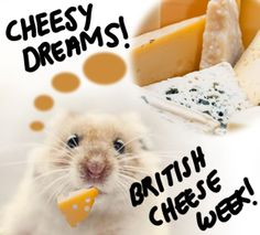 BRITISH CHEESE WEEK Monday 26th May – Sunday 1st June 2014  For those of us that love cheese so much we should be mice. Apricot Stilton is my favourite - whats yours? JD #mice #cheese