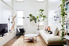 ideas for apartment living room design interiors small spaces Apartment Decorating On A Budget, Small Apartment Design, Small Space Design, Small Apartments, Small Spaces, Small Living Rooms, Living Room Designs, Living Room Decor, Living Spaces