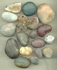 Sample photo showing an assortment of rough agates and jaspers as found on the beaches at Newport - Click here to see our smiling polished f...