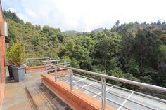 Vista de la terraza a la reserva forestal