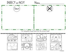 Insect Sort (freebie)