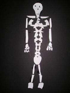 Skeletje knutselen