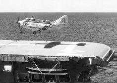 Fairey Gannet HMAS Melbourne