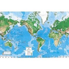 World map wall mural - $77