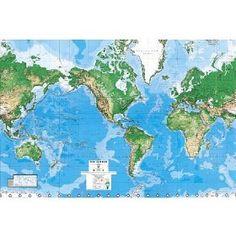 World map wall mural - $77