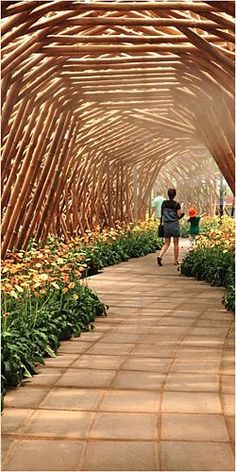 Image result for bamboo pavilion kits