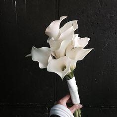 부케 주문 받습니다 :] 신부님께 100% 맞춰드립니다 ~ Katalk .  supiafl  너무 예쁘니까 두장 . . . #flower #flowergram #florist #instaflower  #freelancer #handtied #flowerlesson #flowerclass #supiaflower #supia #daily #花 #花束  #플라워 #플라워레슨 #원데이클래스 #꽃 #꽃스타그램 #플로리스트 #꽃놀이 #플라워클래스 #프리랜서플로리스트 #수피아 #수피아플라워  #카라 #카라부케 #부케 #bouquet