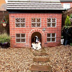 This luxury doghouse takes the 'pampered pet' concept to the extreme. It's a replica of the owner's home, with a fully functional gutter and decorative shrubbery.    Would you pamper your pooch like this?