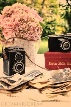 old cameras...excellent decor Mothers Love Free Information on how to (Make Money Online) http://ibourl.com/1nss
