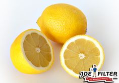 Is your dog chewing on thefurniture? Try putting a little lemon juice where they chew. Most dogs hate the taste of lemon and will stop chewing. #HealthyHomeTips