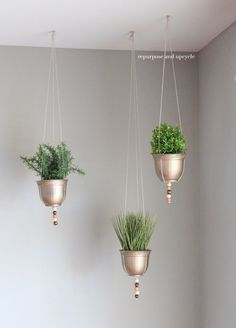 DIY Hanging Planter Project with Dollar Tree Supplies #DIYhangingplanters #hangingplanters